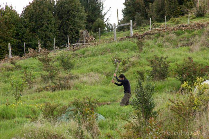 A Casa ecológica da montanha