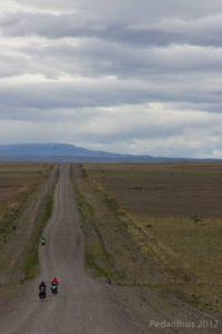 Pampas pampas, RN-40