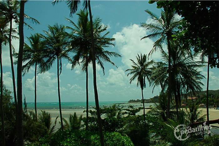 Praias maravilhosas no caminho de Natal até Nísia Floresta. só fica um pouco difícil lembrar o nome de todas elas...