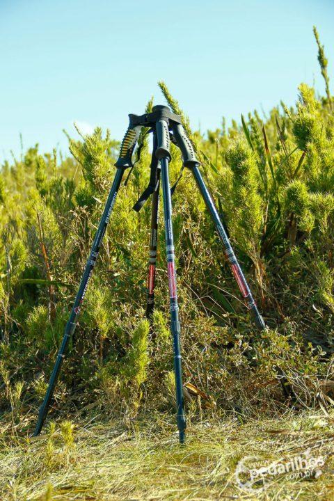 """Quatro bastões viraram um """"quadripé"""" improvisado para a câmera"""