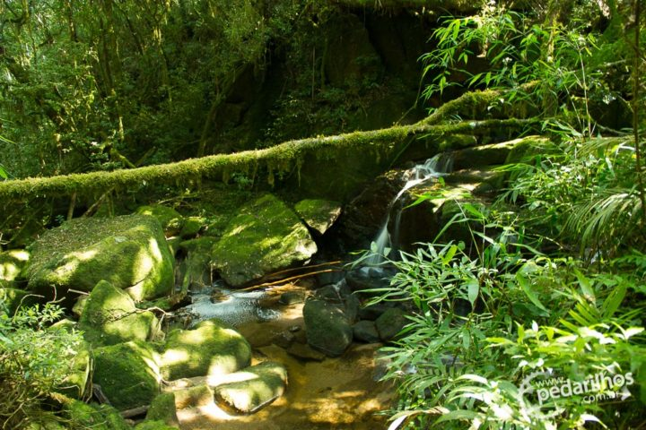 Muitas fontes de água cristalina na primeira metade da trilha