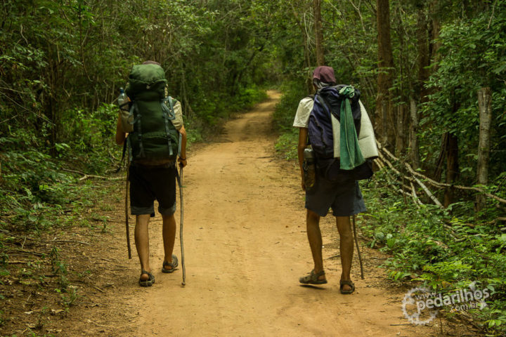 Agora até Lençóis uma estrada, 28km de caminhada até lá em busca de alimento.